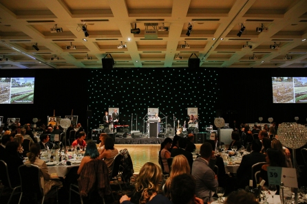 Fremantle Ball 2016_email size065